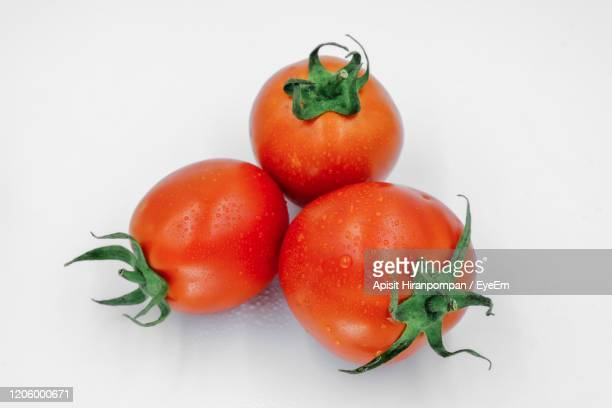 close-up of tomatoes against white background - apisit hiranpornpan stock pictures, royalty-free photos & images