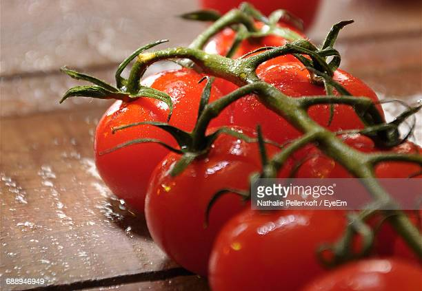 close-up of tomatoes on vine - nathalie pellenkoft stock pictures, royalty-free photos & images