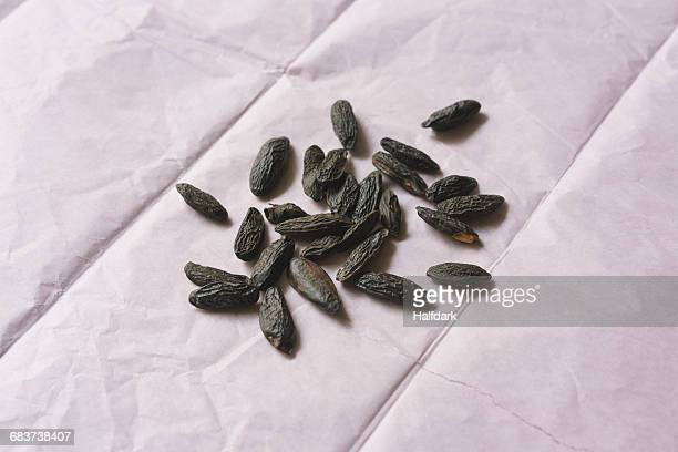 Close-up of tonka beans on paper