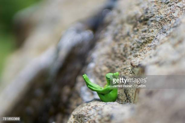 Close-Up Of Toy Frog On Rock
