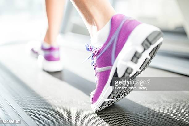 close-up of trainer - purple shoe stock pictures, royalty-free photos & images