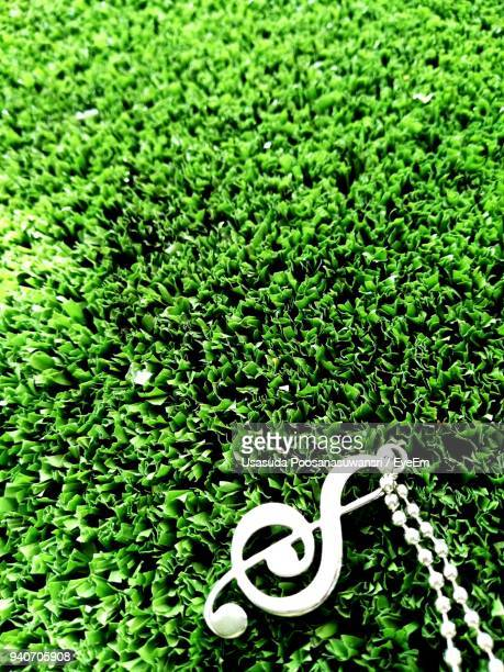 close-up of treble clef chain on grassy field - chiave di violino foto e immagini stock
