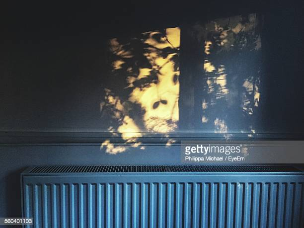 Close-Up Of Tree Shadow On Wall