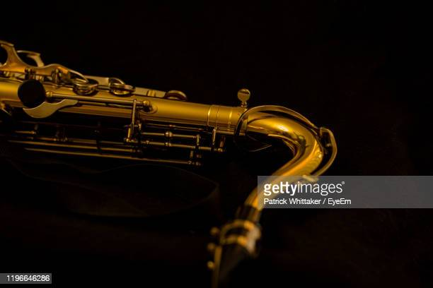 close-up of trumpet against black background - coral springs stock pictures, royalty-free photos & images