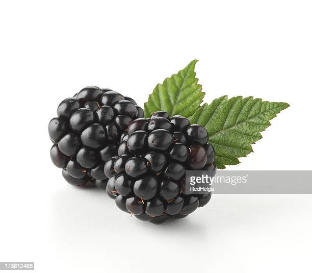 close-up of two fresh blackberry with leaves - blackberry fruit stock pictures, royalty-free photos & images