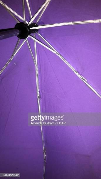 Close-up of umbrella
