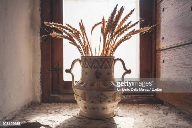 close-up of vase against window at home - alberobello stock pictures, royalty-free photos & images