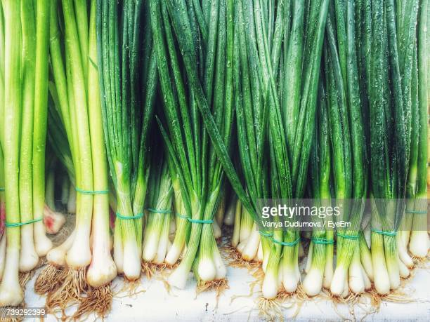 close-up of vegetables - scallion stock pictures, royalty-free photos & images