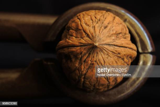 close-up of walnut - nutshell stock photos and pictures