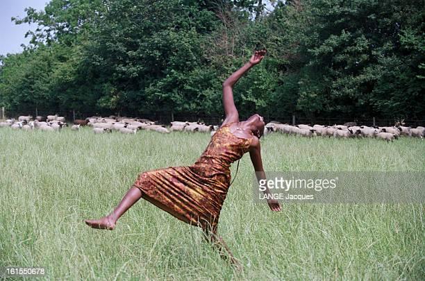 Closeup Of Waris Dirie Somali Top Model Of British Agency Storm Waris DIRIE la gazelle de Somalie a fui son pays où son père voulait la marier contre...