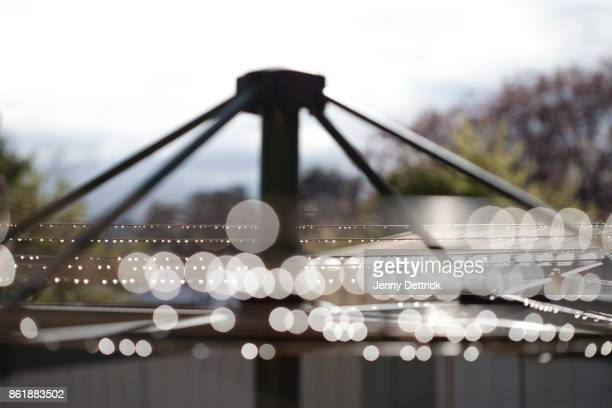 Close-up of water droplets on clothesline