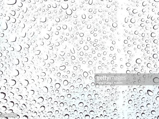 close-up of water drops - water drop stock pictures, royalty-free photos & images