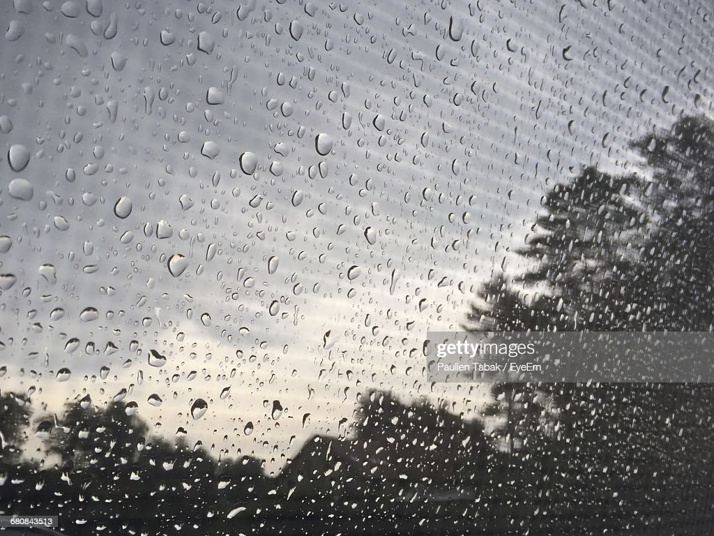 Close-Up Of Waterdrops On Window Against Trees : Stockfoto