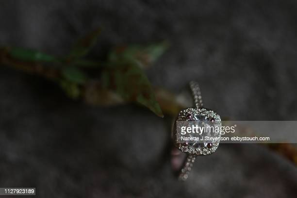 closeup of wedding ring on a twig - nanette j stevenson stock photos and pictures