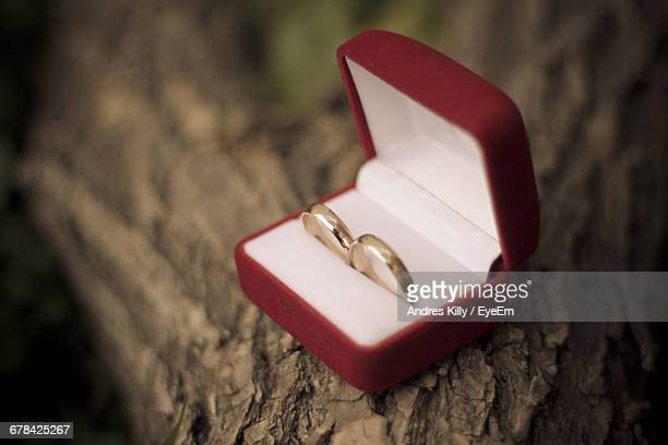 Close-Up Of Wedding Rings In Box On Branch