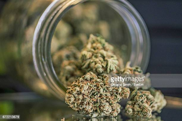 close-up of weed porn in mason jar on table - cannabis plant stock photos and pictures