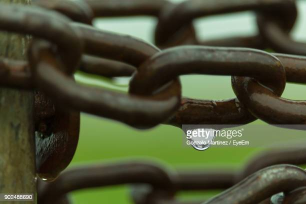 Close-Up Of Wet Chain
