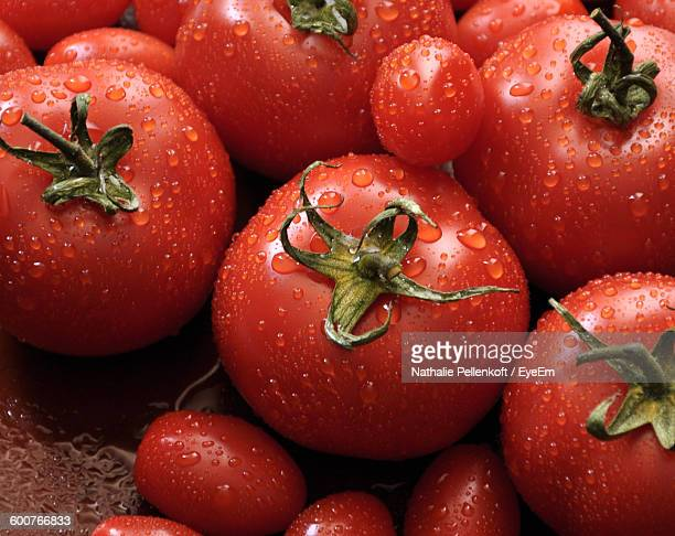 Close-Up Of Wet Ripe Tomatoes
