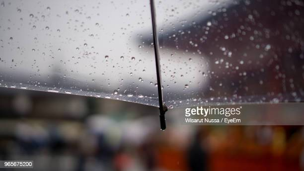 close-up of wet umbrella - wet see through stock pictures, royalty-free photos & images