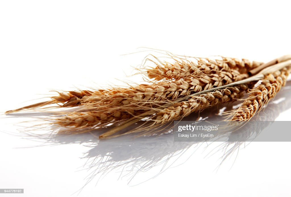 Close-Up Of Wheat On Table : Stock Photo
