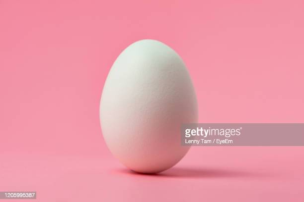 close-up of white egg against pink background - ei stock-fotos und bilder
