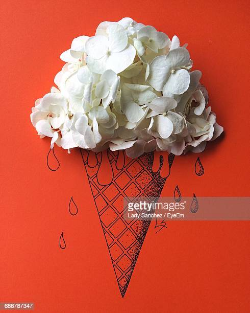 Close-Up Of White Magnoila Flowers On Top Of Icecream Cone Drawing