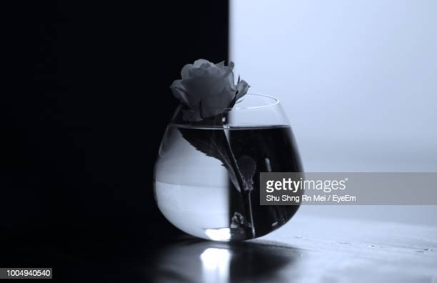 Close-Up Of White Rose On Glass Vase On Table