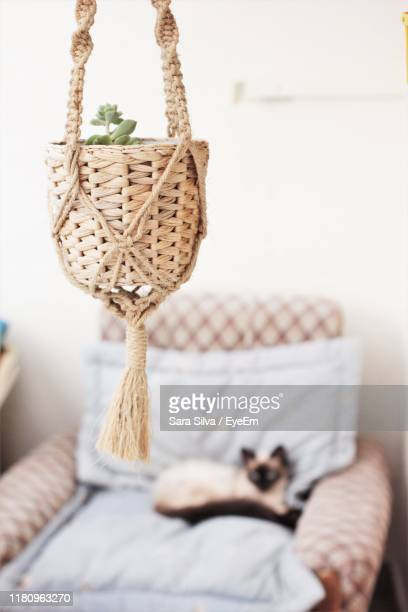 close-up of wicker basket hanging at home - wicker stock pictures, royalty-free photos & images