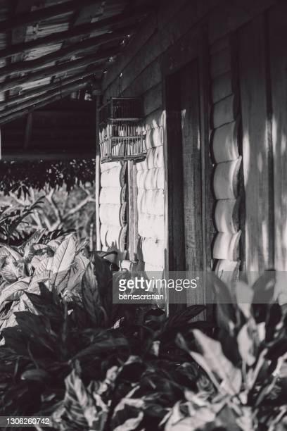 close-up of window of abandoned house - cristian neri foto e immagini stock