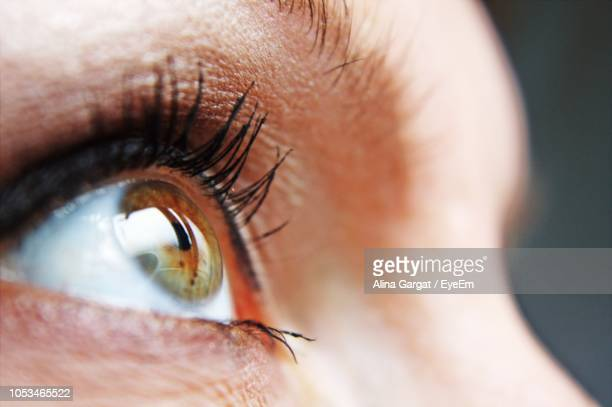 close-up of woman eye looking away - sensory perception stock pictures, royalty-free photos & images