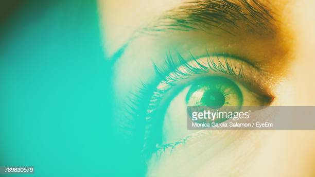 close-up of woman eye - sensory perception stock pictures, royalty-free photos & images