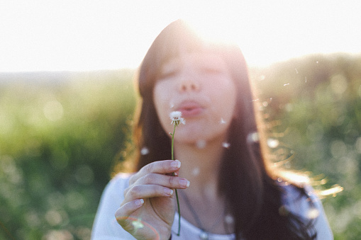 Close-Up Of Woman Hand Holding Dandelion - gettyimageskorea