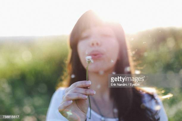 close-up of woman hand holding dandelion - inocência - fotografias e filmes do acervo