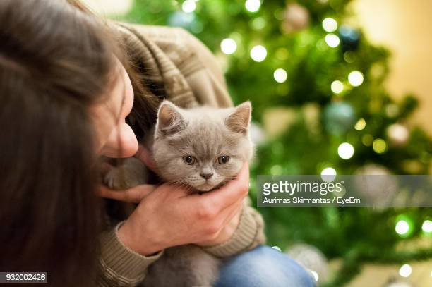 close-up of woman holding kitten against christmas tree - christmas kittens stock pictures, royalty-free photos & images