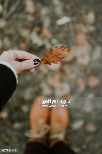Close-Up Of Woman Holding Leaf Outdoors