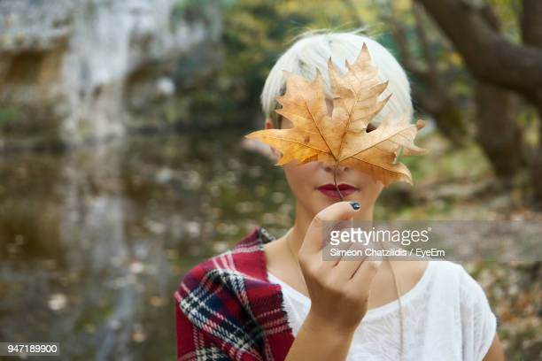 close-up of woman holding maple leaf - maple leaf stock photos and pictures