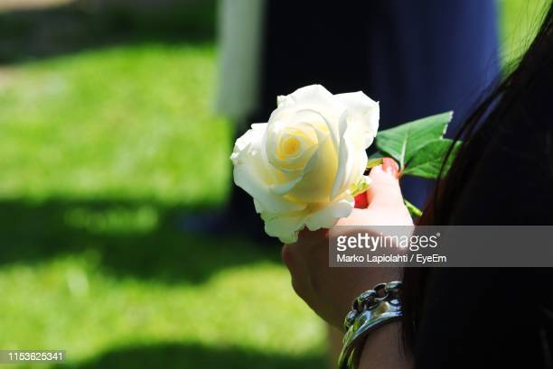 close-up of woman holding rose flower - cemetery stock pictures, royalty-free photos & images