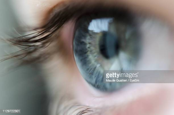close-up of woman looking away - close up stock pictures, royalty-free photos & images