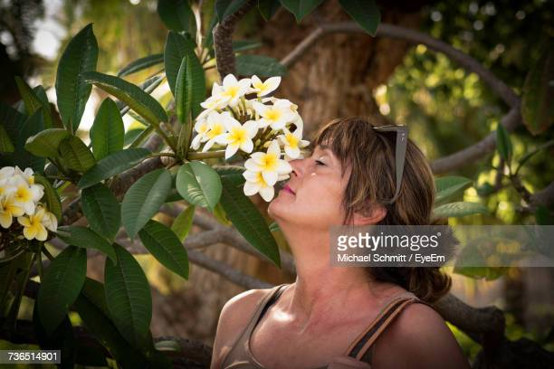 Close-Up Of Woman Smelling Frangipani Flower Outdoors