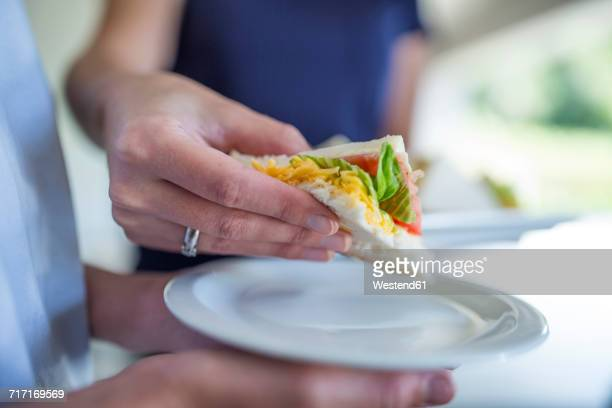 Close-up of woman taking sandwich from plate