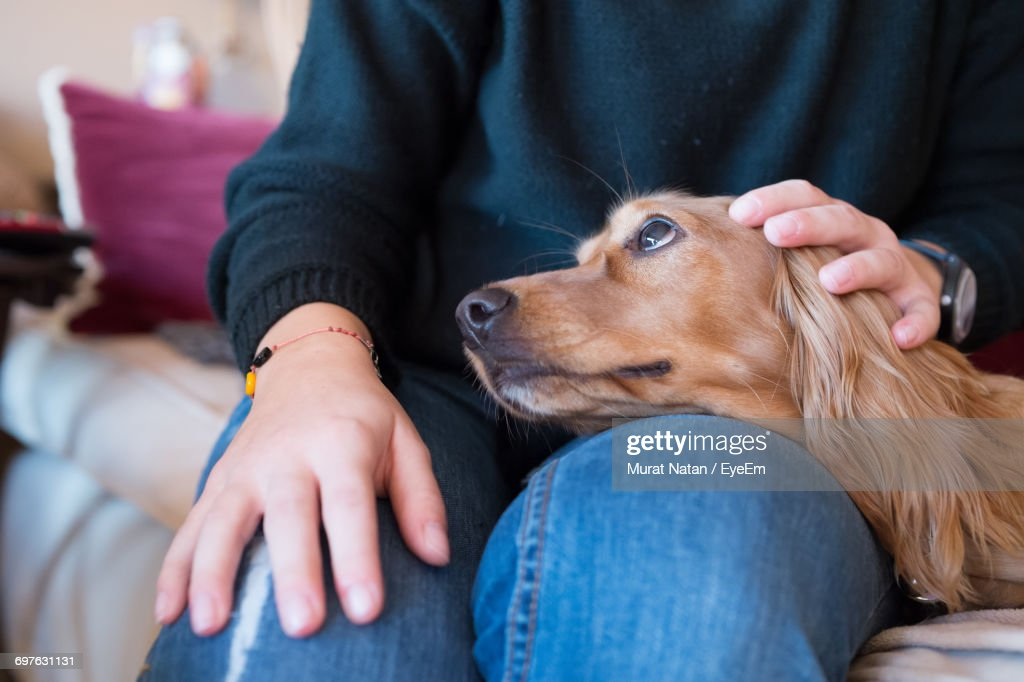 Close-Up Of Woman With Dog : Stock Photo