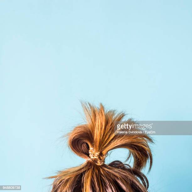 close-up of woman with hair bun against blue background - bun stock pictures, royalty-free photos & images