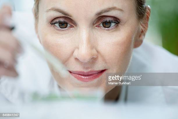Close-up of woman working in laboratory