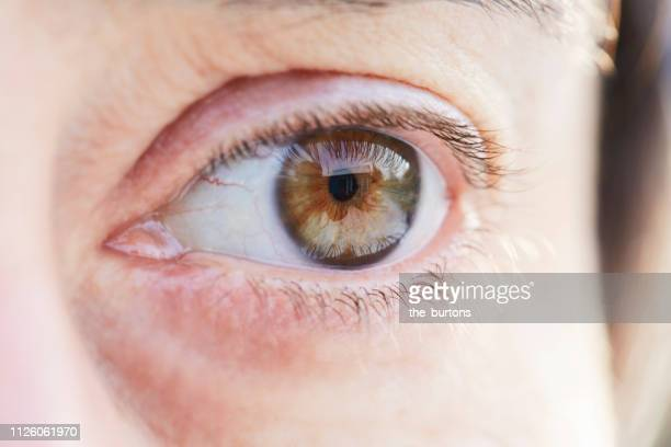 close-up of woman's eye - hazel eyes stock pictures, royalty-free photos & images