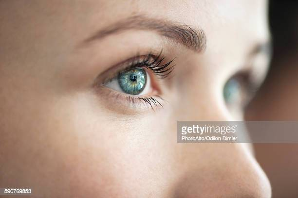 close-up of womans eye - yeux bleus photos et images de collection