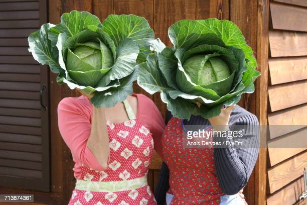 Close-Up Of Women Holding Cabbages