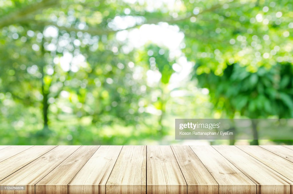 Close-Up Of Wooden Bench In Park : Photo