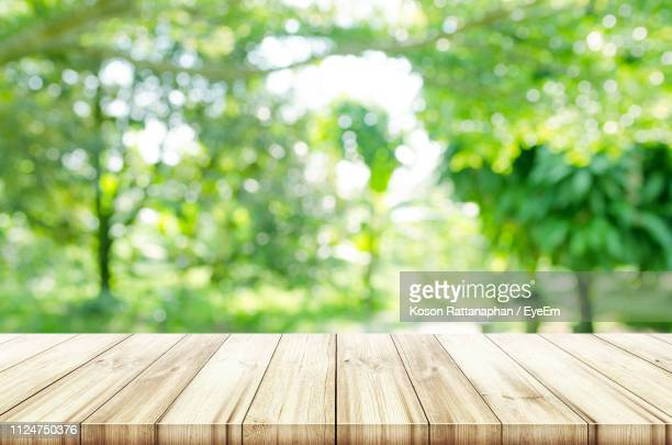 close-up of wooden bench in park - tafel stockfoto's en -beelden