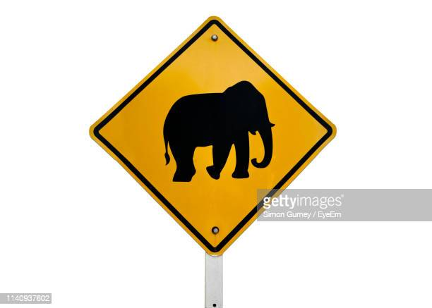 close-up of yellow animal crossing sign against white background - animal crossing stock pictures, royalty-free photos & images