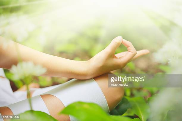 Close-up of Yoga chin mudra in the forest